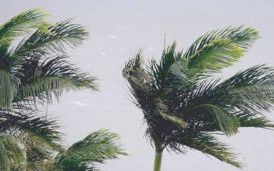 Queensland residents urged to prepare as tropical cyclone Owen looms